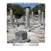 Roman Columns Shower Curtain