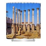 Roman Temple In Cordoba Shower Curtain