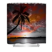 Romance II Shower Curtain