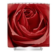 Romance IIII Shower Curtain by Angela Doelling AD DESIGN Photo and PhotoArt