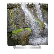 Romancing The Stone Shower Curtain