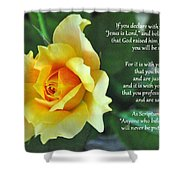Romans Yellow Rose Shower Curtain