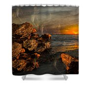 Romantic Dreams Shower Curtain