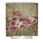 Romantiquite - 01a Shower Curtain