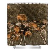 Romantiquite -  04c Shower Curtain