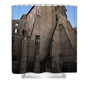 Rome - Centuries Of History And Architecture  Shower Curtain by Georgia Mizuleva