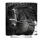 Romke 401 Long Line Shower Curtain