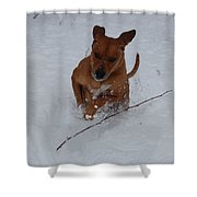 Romp In The Snow Shower Curtain