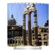Romr Forum Columns Shower Curtain