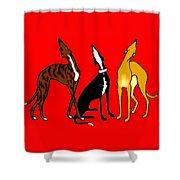 Roo Greyhounds Shower Curtain