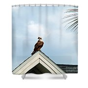 Roof Ornament Shower Curtain