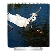 Rookery 16 Shower Curtain