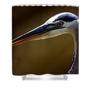 Rookery 2 Shower Curtain