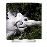 Rookery 4 Shower Curtain