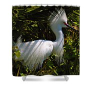Rookery 9 Shower Curtain