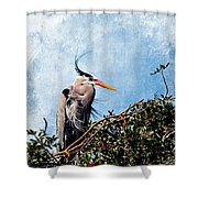 Rookery Great Blue Shower Curtain