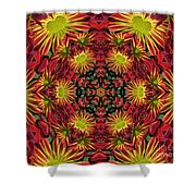 Roomum Shower Curtain