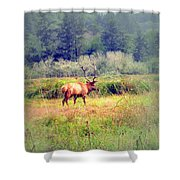 Roosevelt Bull Elk Shower Curtain