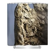 Roosevelt Geyser Shower Curtain