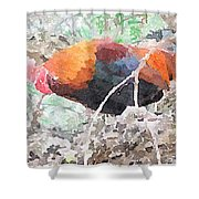 Roost Shower Curtain