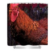 Rooster In October Shower Curtain
