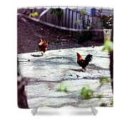 Rooster Shower Curtain