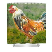 Rooster Rules Shower Curtain