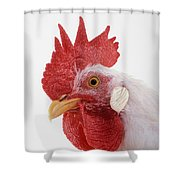 Rooster Shower Curtain by Thomas Kitchin & Victoria Hurst