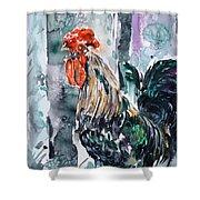 Rooster  Shower Curtain by Zaira Dzhaubaeva