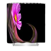 Root Polar View Shower Curtain