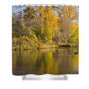 Root River Autumn 1 Shower Curtain