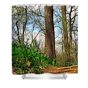 Root Steps Shower Curtain