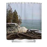 Rooted In Winter Shower Curtain