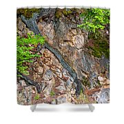 Roots And Rocks Shower Curtain