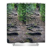 Roots - Cross Your Eyes And Focus On The Middle Image That Appears Shower Curtain