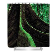 Roots Of A Giant Tree, Daintree Shower Curtain