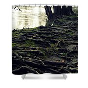 Roots On White River Shower Curtain
