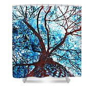 Roots To Branches II Shower Curtain