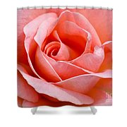 Rosa Summer Lady  Shower Curtain
