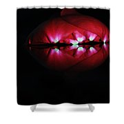 Rose 003 Shower Curtain