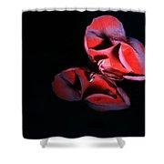 Rose 009 Shower Curtain