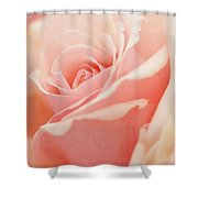 Rose 2 Shower Curtain