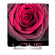 Rose 33 Love Shower Curtain