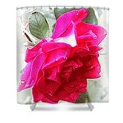 Rose - 4505-004 Shower Curtain