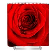 Rose 6 I Love You Shower Curtain