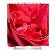 Rose Abstract Shower Curtain