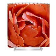 Rose Abstract Shower Curtain by Rona Black