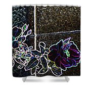Rose Aglow Shower Curtain