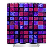 Rose And Purple Sudoku Shower Curtain