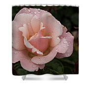 Rose And Rain - Pale Pink Raindrops Shower Curtain